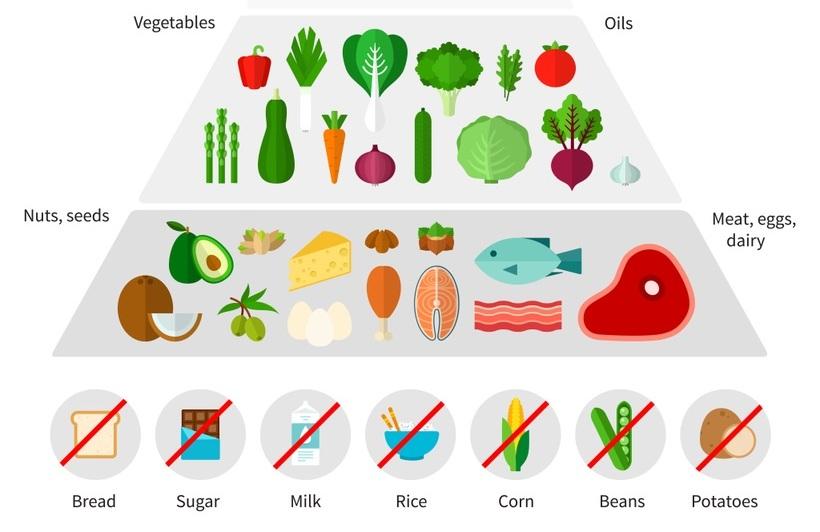 digialpha fitalpha keto diet